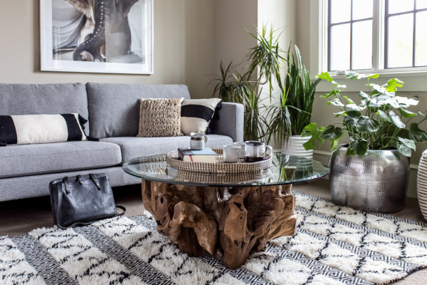 Natura Round Root Tempered Glass Coffee Table